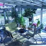 Ogród-zimowy-49-150x150